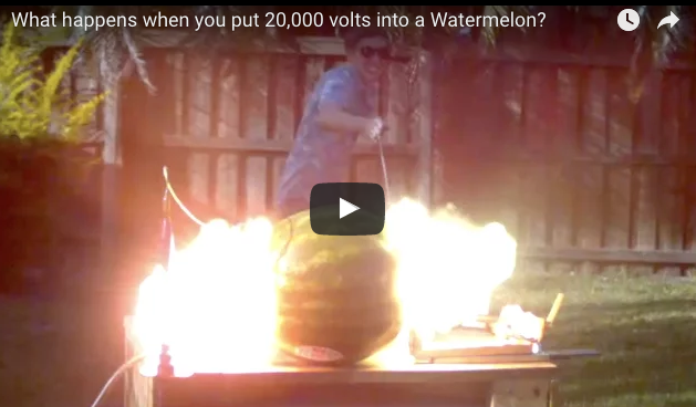 20000 volts meets Watermelon
